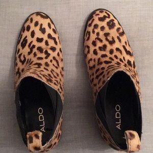 Aldo Shoes - Aldo Leopard booties